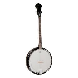 Tanglewood TB24DLXT Union Banjo
