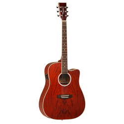 Tanglewood TW28CEXB Evolution Exotic Westerngitarre
