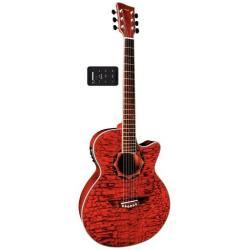 VGS V-2A CE/F Elektro Akustikgitarre TR