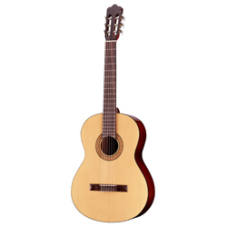 Walden N350 Konzertgitarre