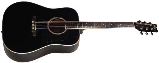 Washburn D 10 S Black