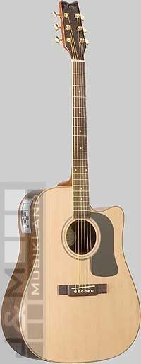 Washburn D-10 SCEDL-N  Westerngitarre