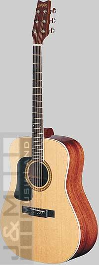 Washburn D-10 SLH-N Westerngitarre lefthand