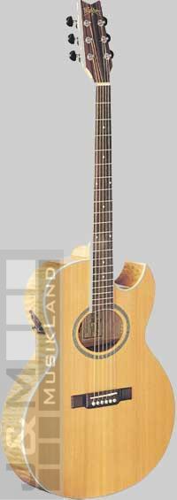 Washburn EA-20 SDL-N Westerngitarre