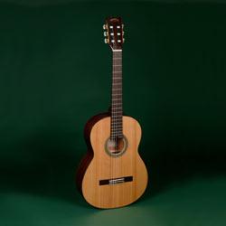 Sigma CM-6NF Konzertgitarre