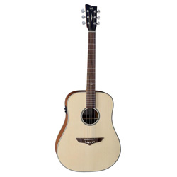 VGS RT-10E Dreadnought Root Natural Satin