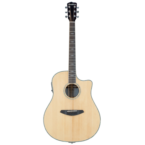 Breedlove SGD22CE Stage Westerngitarre