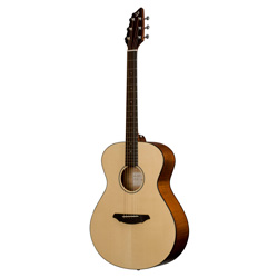 Breedlove BRPYCSMP C200/SMP Passport Original