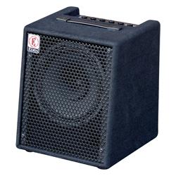 EDEN EC-10 Basscombo