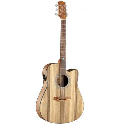 Randon Guitars RGI-PW1CE Dreadnought